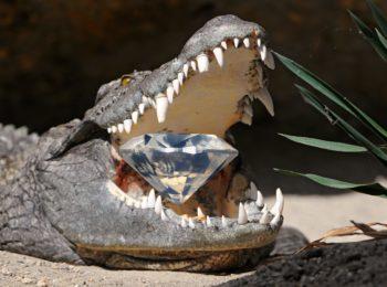 Krokodil.Diamant